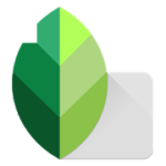 Download Snapseed App for PC Windows 10/8.1/7